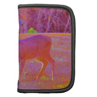 Ciervos del arco iris en un campo planificador