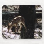 Ciervos del bebé tapetes de ratones