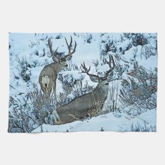 Ciervos del dólar en nieve toalla de mano