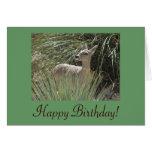 Ciervos del feliz cumpleaños