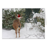 Ciervos del navidad tarjetón