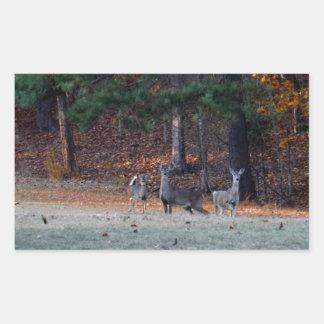 Ciervos del otoño en la distancia etiqueta