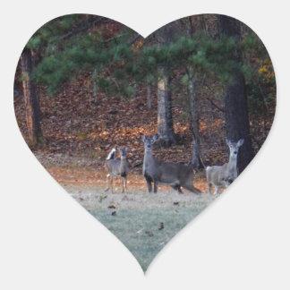 Ciervos del otoño en la distancia calcomanía corazón personalizadas