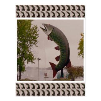 Ciervos del tiburón de ballena de los pescados de tarjetas postales