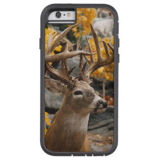 Ciervos del trofeo funda para  iPhone 6 tough xtreme