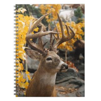 Ciervos del trofeo libro de apuntes