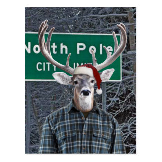 Ciervos divertidos que llevan el gorra de Santa en Tarjetas Postales