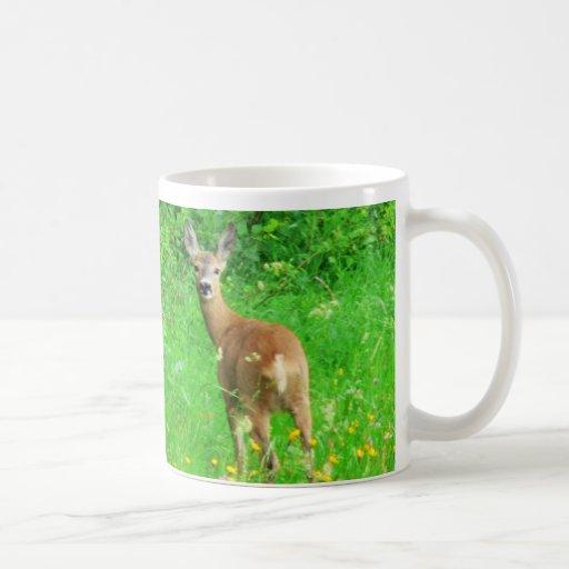 ciervos dulces taza de café