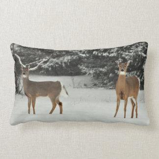 Ciervos en almohada de la nieve