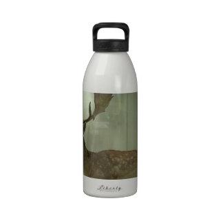 Ciervos en barbecho dama del Dama Botellas De Agua Reutilizables