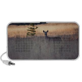 Ciervos en campo de la hierba alta notebook altavoces