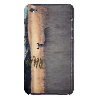 Ciervos en campo de la hierba alta iPod touch Case-Mate protector