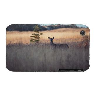 Ciervos en campo de la hierba alta iPhone 3 Case-Mate protector