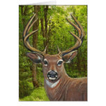 Ciervos en el prado de la ceniza tarjetas
