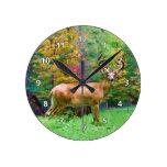 Ciervos en el reloj del bosque