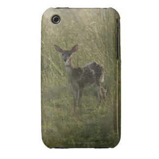 Ciervos en hierba alta Case-Mate iPhone 3 carcasa
