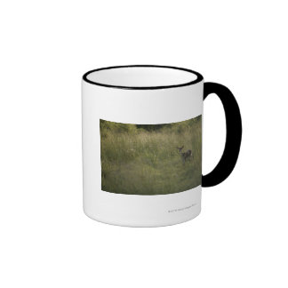 Ciervos en hierba alta taza