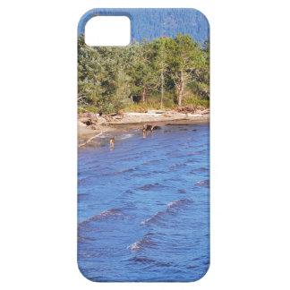 Ciervos en la bahía de Nehalem - parque de estado iPhone 5 Case-Mate Funda