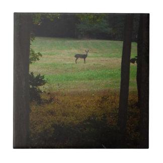 Ciervos en la distancia azulejo cuadrado pequeño