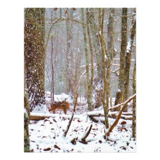 Ciervos en la nieve lamiendo la pierna plantilla de membrete