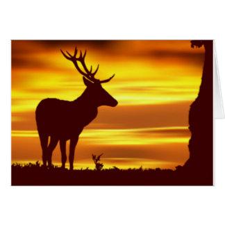 Ciervos en la oscuridad tarjeta de felicitación