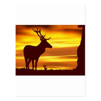 Ciervos en la oscuridad postal