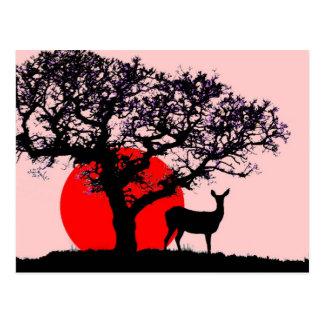 Ciervos en la puesta del sol postales