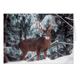 Ciervos en la tarjeta de felicitación de la nieve