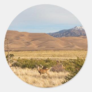 Ciervos en las grandes dunas de arena de Colorado Pegatina Redonda