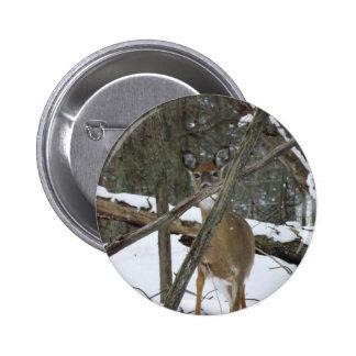 """Ciervos en las maderas botón del estándar 2-1/4"""" pin redondo de 2 pulgadas"""
