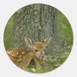 ciervos en las maderas etiqueta redonda