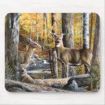 Ciervos en las maderas Mousepad