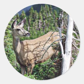 Ciervos en las maderas pegatina redonda