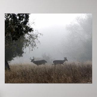 Ciervos en niebla poster