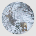 Ciervos en nieve pegatina redonda