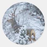 Ciervos en nieve pegatinas redondas
