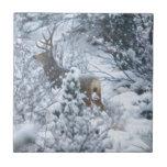 Ciervos en nieve tejas