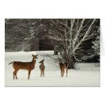Ciervos en tarjeta de felicitación de la nieve