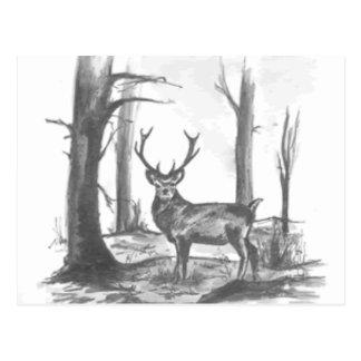 ciervos en woodsgif postal