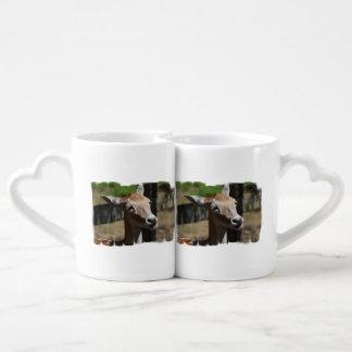 Ciervos hambrientos tazas para enamorados