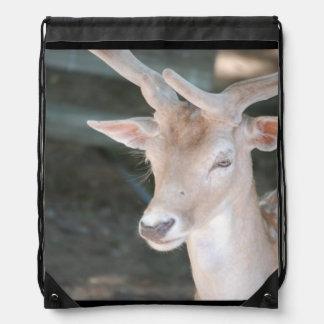 Ciervos lindos mochilas