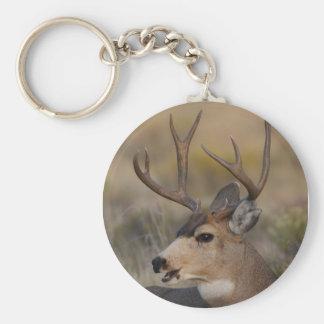 ciervos llaveros personalizados