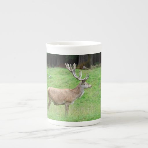 ciervos masculinos taza de china