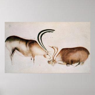 Ciervos masculinos y femeninos póster