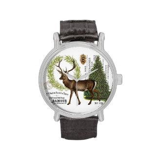 ciervos modernos del invierno del arbolado del reloj