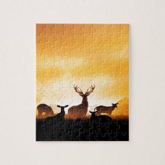 Ciervos Puzzles Con Fotos