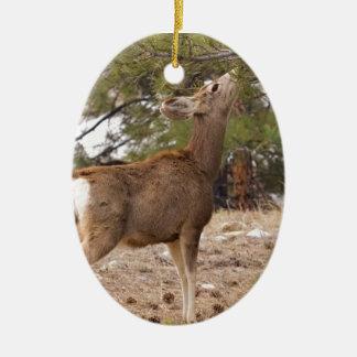 Ciervos que comen el cono del pino en árbol adorno ovalado de cerámica