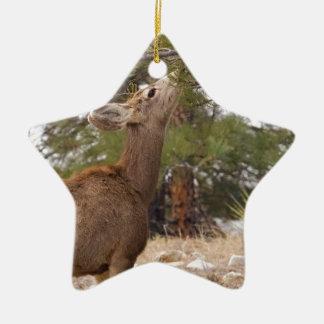 Ciervos que comen el cono del pino en árbol adorno de cerámica en forma de estrella