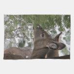Ciervos que comen ramas del cedro toalla de cocina