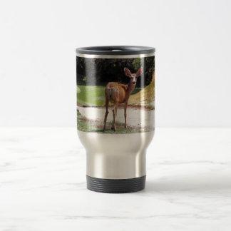 ciervos que miran la naturaleza de la cámara taza de viaje de acero inoxidable